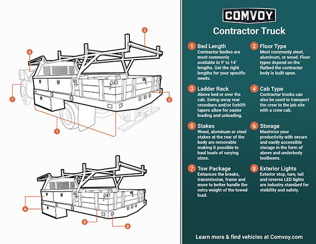 contractor body infographic